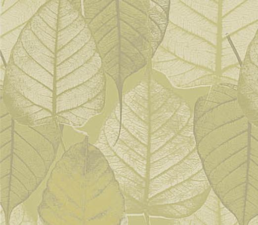 Carta da Parati Foglia Verde Dorata Vinilica Lavabile - AERREe