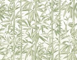 Domus Naturae Carta da parati digitale 30596 verde - AERREe