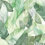 Carta da parati foglie di banano Bianco 5900020 - Anima Coordonne - AERREe