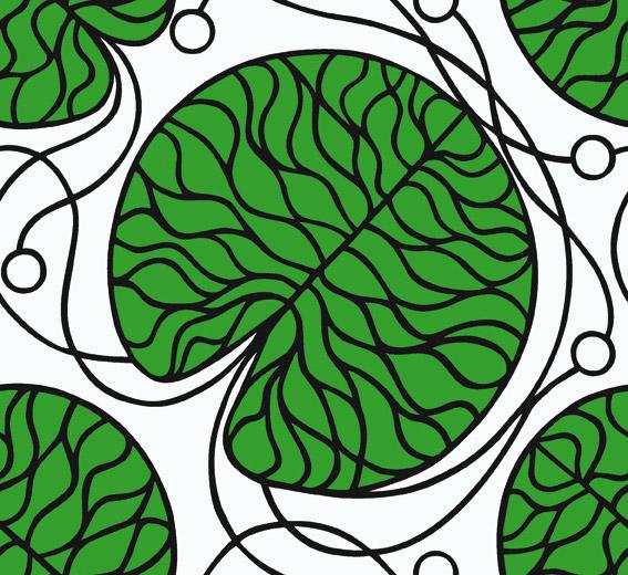 Carta da Parati Marimekko Essential 14130 Bottna - AERREe