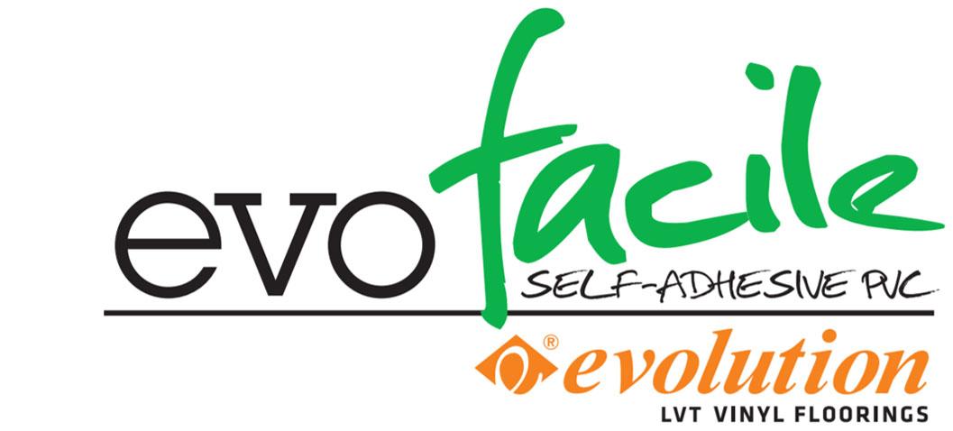 Evolucion EvoFacile logo AERREe