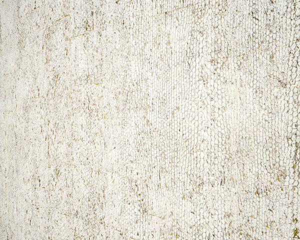 Rivestimento Murale in sughero Omexco Cobra dettaglio AERREe
