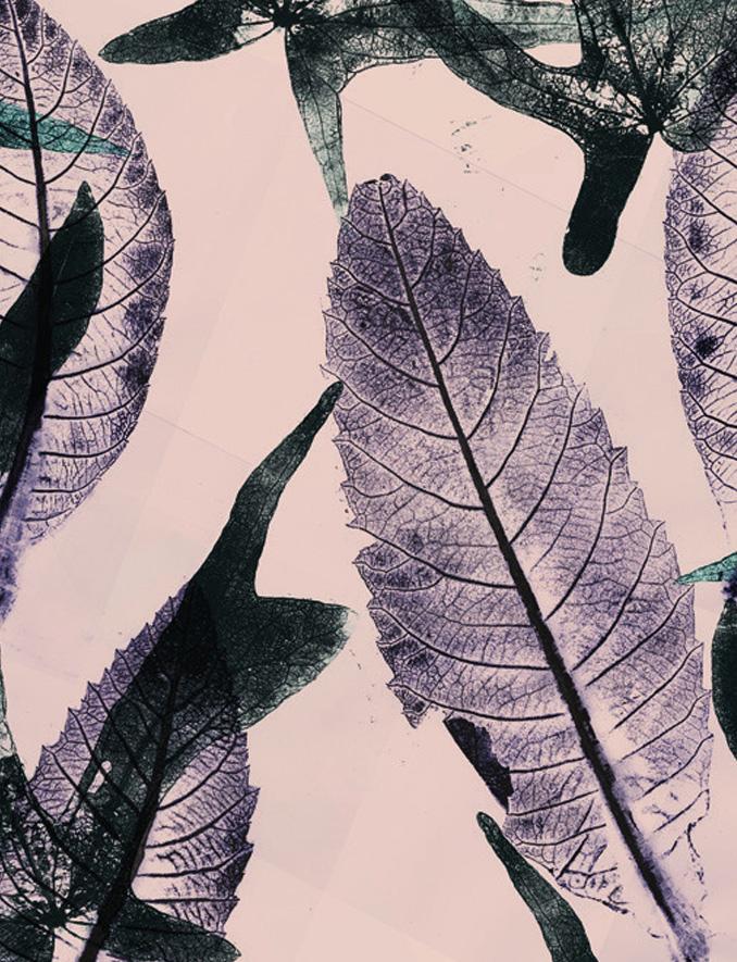 Carta da parati foglie e piante Limonta Pix-Art Passy Flora e Fauna dettaglio AERREe